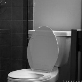Toilet (Shane Walters Photography )