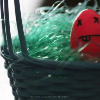 Shane Walters Images - Dead Egg (0793)