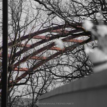 Shane Walters Images - Jefferson Barracks Bridge (0932)