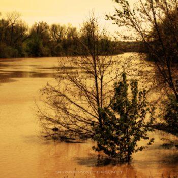 Flooding Fenton MO - Shane Walters Images