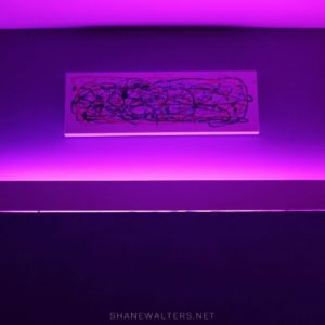 Bed In Floor Contemporary Bedroom Project Photos 9826 Purple LED Lighting