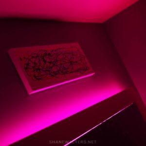 Bed In Floor Contemporary Bedroom Project Photos 9857 Pink Headboard