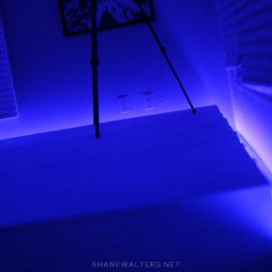 Bed In Floor Contemporary Bedroom Project Photos 9884