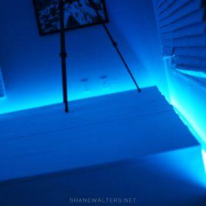 Bed In Floor Contemporary Bedroom Project Photos 9885
