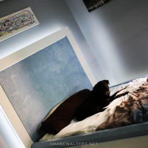 Bed In Floor Contemporary Bedroom Project Photos 9952