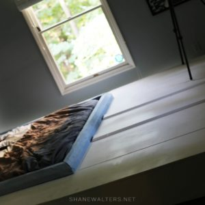 Bed In Floor Contemporary Bedroom Project Photos 9953