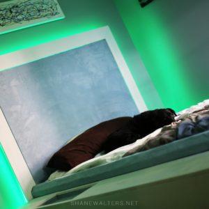 Bed In Floor Contemporary Bedroom Project Photos 9978